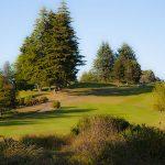 Golf_Course_3399