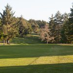 Golf_Course_3445