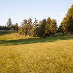Golf_Course_3523
