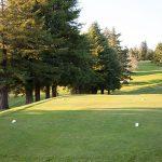 Golf_Course_3548